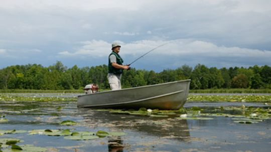 How are fishing reports created?