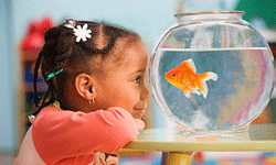 If your child is going to be involved in class, she'll need to be able to communicate effectively.