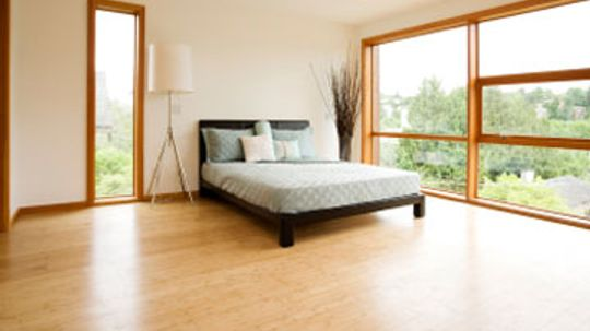 Beware of Bedroom and Basement Allergens