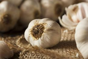"""Garlic was once known as """"Russian penicillin."""""""