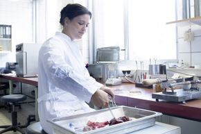 Tasting as a profession can include sampling different variations of a product or recipe and offering specific feedback.