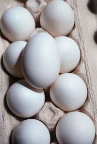 Store eggs inside the refrigerator, and use them within three weeks of purchasing.