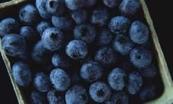Blueberries have bacteria-blocking properties.