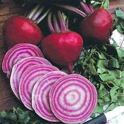 Unless you're the owner of a famous fictional beet farm, you likely take it easy on these iron-rich vegetables.