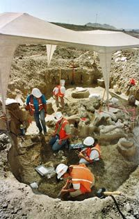 Paleontologists excavate a 30,000-plus year-old mastodon and the remains of several other extinct animals at the Eastside Reservoir Project near Hemet, Calif.