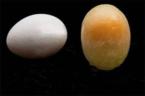 You can freeze eggs — but not whole in their shells. You'll need to crack them, and separate the yolks and whites.