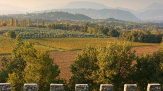Ultimate Guide to the Friuli-Venezia Giulia Wine Region