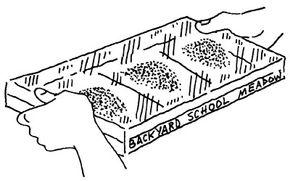 Soil samples arranged in a Secret Seed Garden.