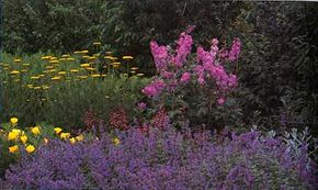 Learn about this cool color garden in the  color theme garden ideas section. See more pictures of famous gardens.