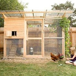 A full size door makes it easy to spend time in the coop with the chickens.