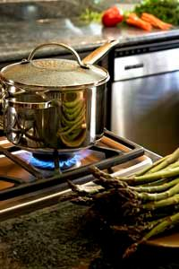 Green Living Image Gallery In general, gas stoves are more energy-efficient than electric ones. See more green living pictures.