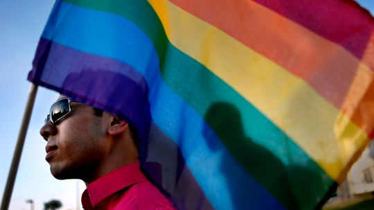 How Gay Rights Organizations Work