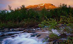 Rushing mountain brook in Laktajakka, Sweden