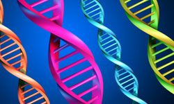 Like some other rare diseases, Segawa Syndrome is genetic.
