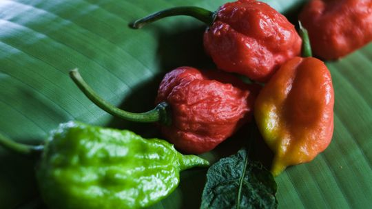 Can Ghost Peppers Kill You?