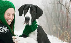 Great Danes are known for their size, but they fit right in with most families.