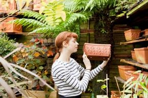 Garden fans will find a lot of gifts to like in our gift guide. See more pictures of gardening.