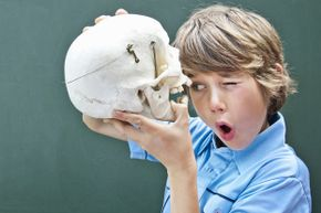 A skull might be a pretty cool present, but our gifts provide more interactive fun while teaching a thing or two about science.