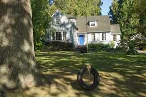 Two reasons to plant trees in your yard: energy cost savings and tire swings