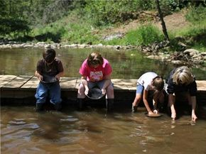With gold trading near record highs in 2008, people flocked to California's gold country in search of it. Companies offering gold panning tours were inundated with reservations.