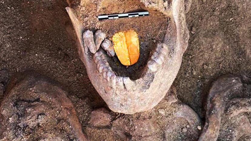 Gold-tongue mummy