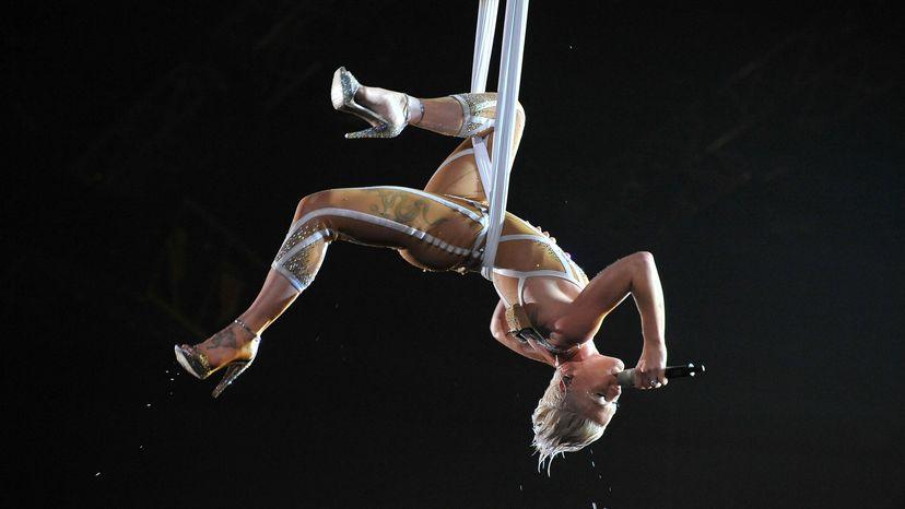Pink, trapeze, Grammys