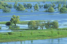 Flood plains like this one help avoid a deluge, but development removes many of nature's protective barriers.