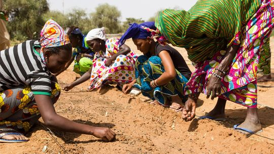 Africa's Great Green Wall Is a Conservation — and World — Wonder