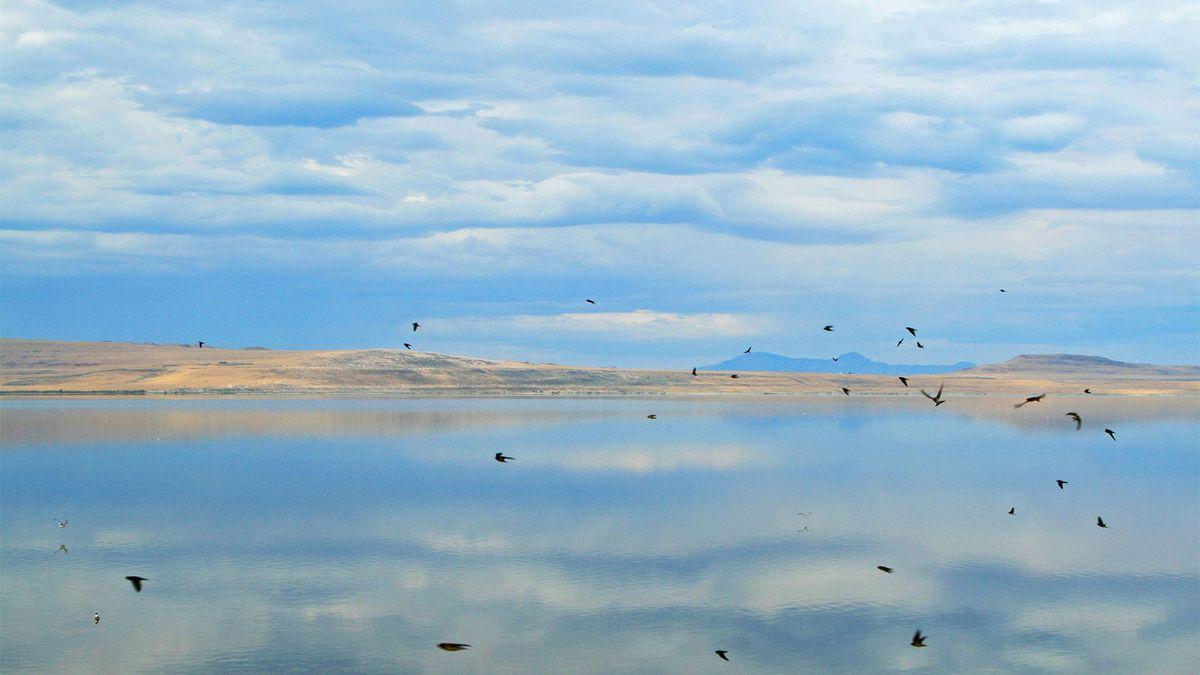 El legendario Gran Lago Salado de Utah se está reduciendo
