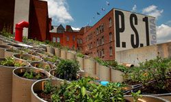 Food crops flourish on the rooftops of New York City, well above the streets where C.H.U.D.s and Yankee fans battle for survival.