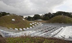 """The Piano-designed California Academy of Sciences in San Francisco's Golden Gate Park has a """"living"""" roof."""