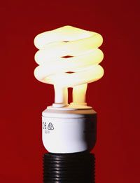 Compact fluorescent light bulbs use a quarter of the electricity of traditional bulbs.