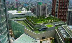 This Tokyo roof garden's a good example of green building advances that are both practical and pleasing to the eye.
