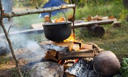 Never leave your food or campfire unattended -- it could be detrimental to the forest.