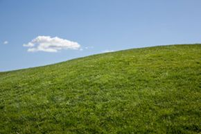 Greening your lawn isn't about the color of the grass. See more green living pictures.