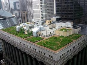 The Chicago City Hall green roof helps cool the building and minimize water run-off. See more green living pictures.