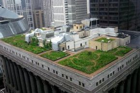Find out how a green roof can help the environment! Check out these home construction pictures to learn more.