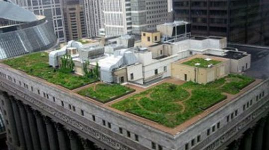 Green Roofs And White Roofs: Low Tech Ways To Save Tons Of Energy