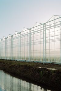 A greenhouse in the Netherlands.