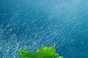 Groundwater comes from precipitation, like rain, snow or sleet.