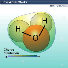 The molecular makeup of water