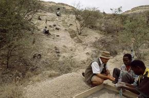 A scientist searching for hominid fossils at Olorgasailie, the find site for the Homo erectus specimen found by Rick Potts. This specimen is the first hominid fossil found after more than 60 years' work at Olorgasaili.