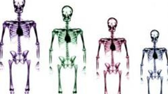 16 Unusual Facts About the Human Body