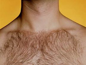 Body hair facilitates sweating that cools our bodies.