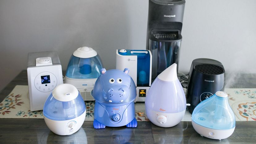 collection of humidifiers