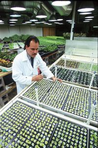 Using a totally controlled environment, this 10,000 foot hydroponic garden grows 30 varieties of vegetables and herbs.