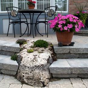 The potted plant and moss-covered boulder lend life and nature to this patio.
