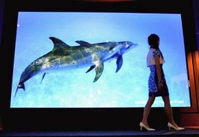 A woman walks along the Matsushita's 150-inch Advanced High-Definition Plasma Display. See more HDTV pictures.