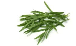 Fresh tarragon is best for this dressing but in a pinch you could substitute one teaspoon of dry tarragon.