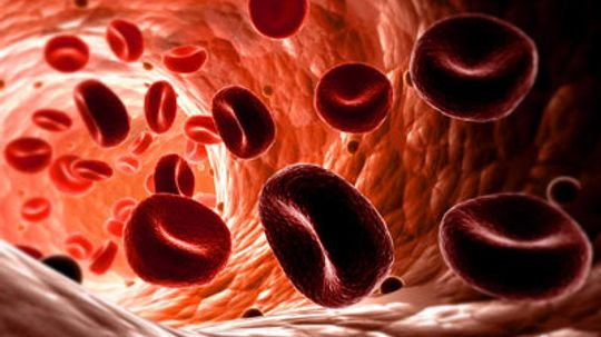 How and why does the heart pump blood to itself?